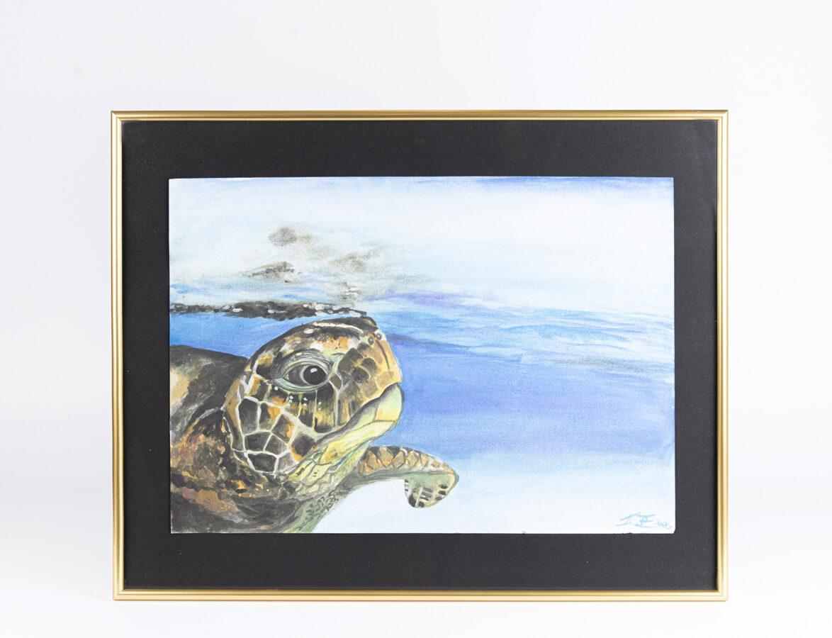 """D.Rudāne - glezna """"Sea Turtle in the  morning"""""""